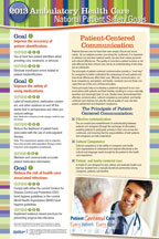 2013 National Patient Safety Goal Poster for Ambulatory Cares